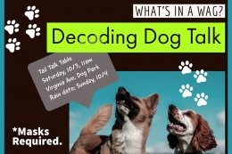 Flyer of event with image of two dogs, title in bold font, and text bubbles with event time and description