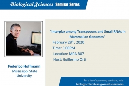 Interplay among Transposons and small RNAs in mammalian genomes. February 28, 3pm, MPA B07.