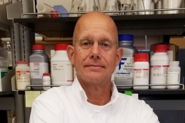 Dr. Paul Roepe, Professor & Co-Director, Georgetown University Center for Infectious Disease, Georgetown University, Department