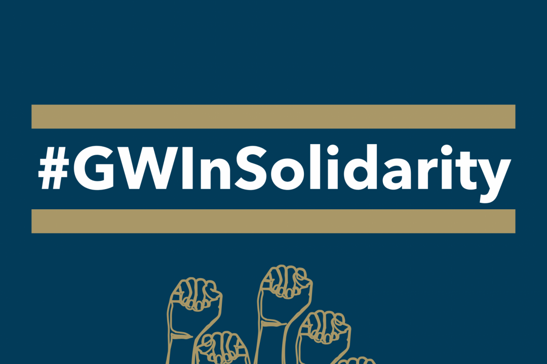 GW In Solidarity - raised fists