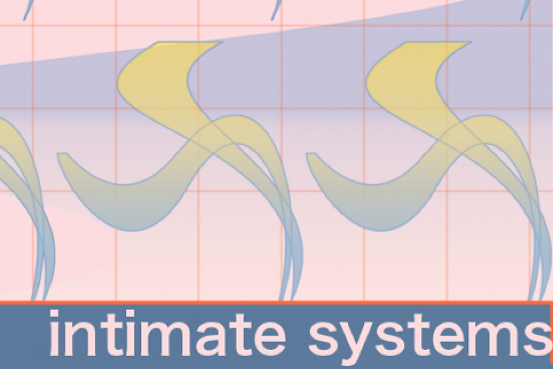 intimate systems poster